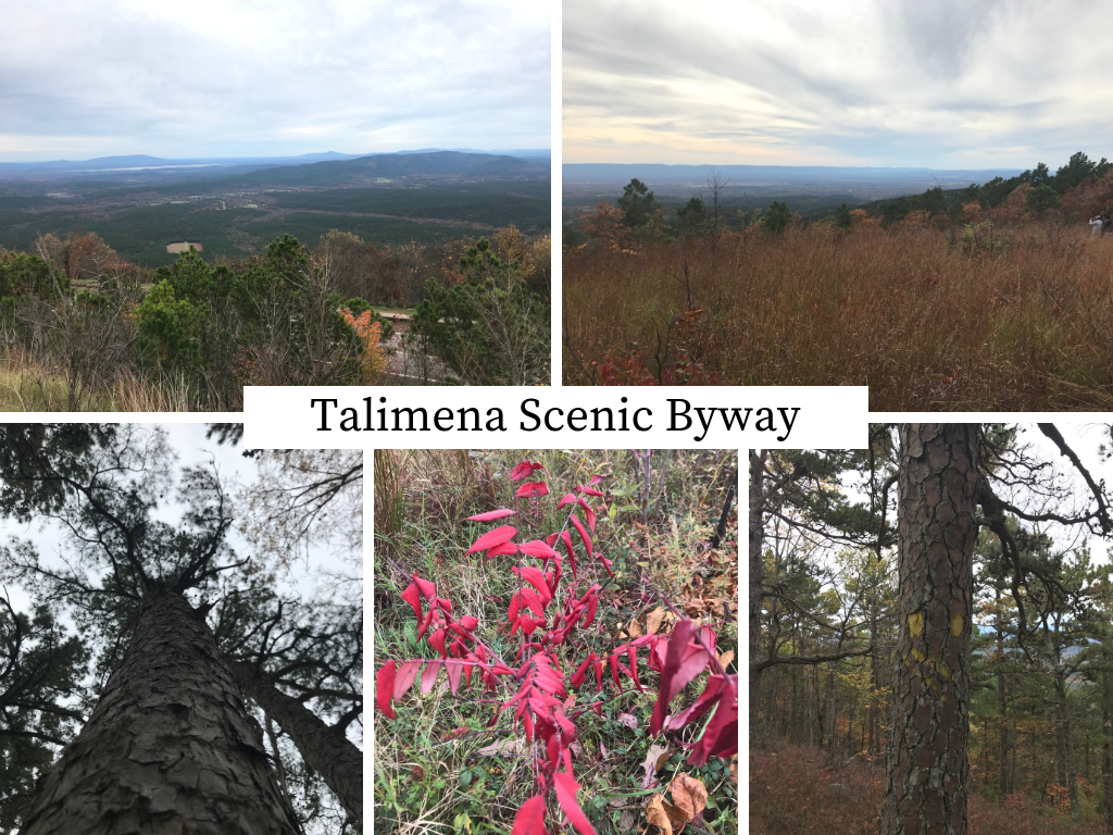 Photo collage of fall leaves on the Talimena National Scenic Byway