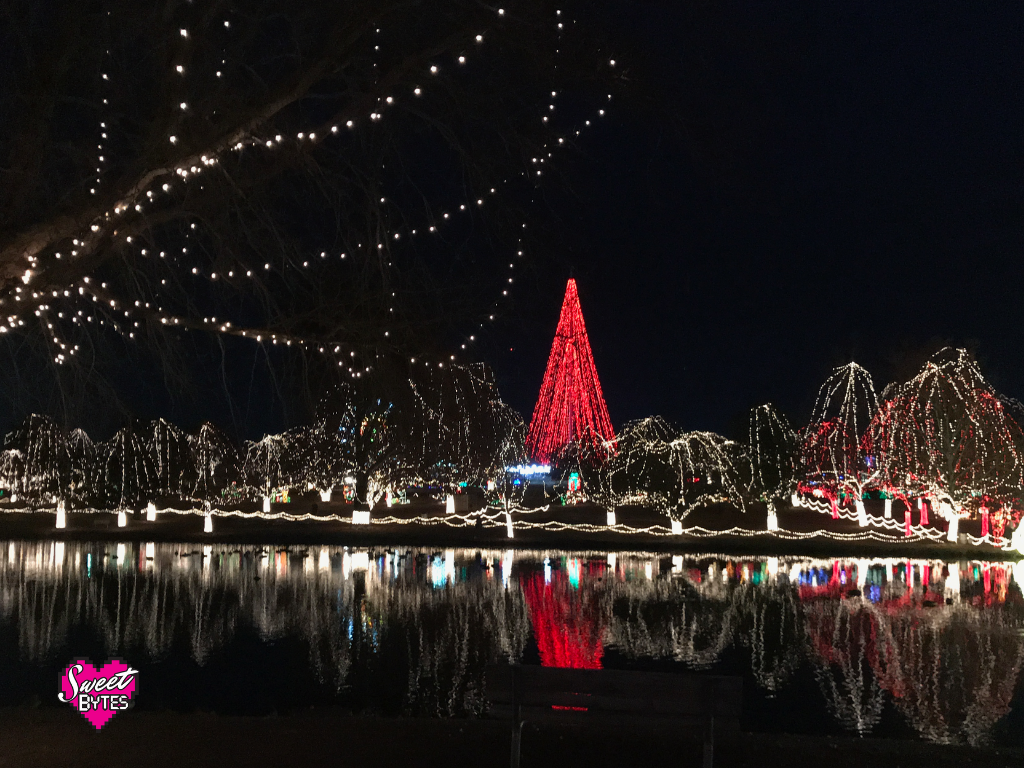 A view of Christmas lights at night at the Festival of Lights in Chickasha, OK